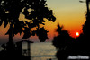 flower shadow (Jesse Davies) Tags: agios gordios beach wine sea water sunset sillouette focus