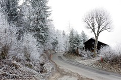 Givre à Savagnier (NE) (jean-danielechenard1) Tags: givre froid valderuz neuchâtel paysagehivernal savagnier frost cold winter kalt