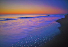 A sea in a dawn is a global sigh (chikaraamano) Tags: sea wave dawn sky colors horizon winter gentle wrapped quiet pure view pause time space peaceful happily create collaboration creating beautiful peace happy