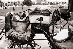 Carriage (Tom Levold (www.levold.de/photosphere)) Tags: fuji fujixpro2 isfahan xf35mm esfahan street sw bw sack carriage bag kutsche