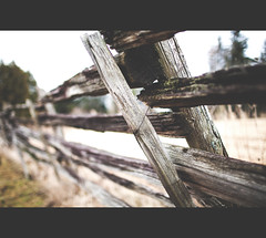 8\52 - Inspire Saturday (Mark Somerville.) Tags: mark somerville burlington 552 project fence