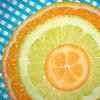 180304 ockm 180305 © Théthi (thethi (pls, read my 1st comment, tks a lot)) Tags: citrus macromondays fruit agrume citron orange kumquat vitamine soleil macro namur belgium c4 carré faves110 cercle rond faves115