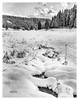 2018 Schneefeld (jeho75) Tags: wista field fujinon harz deutschlandgermany winter schnee snow analog schwarz weis black white grosformat 4x5 large format fomapan landschaft landscape