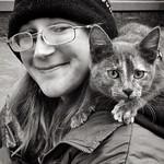 City Kitty thumbnail