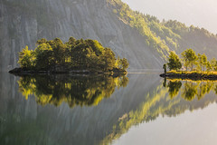 Gold and silver (ozrot) Tags: reflection norway summer morning lake backlight trees island