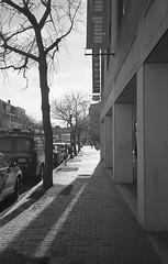 (Stevelb123) Tags: film filmphotography 35mm 35mmfilm 35mmblackandwhitefilm blackandwhite35mm blackandwhite35mmfilm blackandwhite blackandwhitephotography blackandwhitefilm blackandwhitefilmphotography bnw bnwfilm monochrome monochromefilm analogphotography analog ilfordfilm ilford ilford400 ilfordhp5 ilfordhp5plus hp5 hp5plus olympus olympusxa