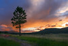 sunset at the Valles Caldera 30Aug08 (johngpt) Tags: trees sunset efs1785mmf456isusm vallescalderanationalpreserve jemezcaldera tree clouds places canon40d sliderssunday hss