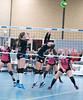 41170448 (roel.ubels) Tags: flynth fast nering bogel vc weert sint anthonis volleybal volleyball indoor sport topsport eredivisie 2018 activia hal