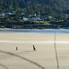 blustery day in Yachats (alex1derr) Tags: oregon oregoncoast yachats beach sand