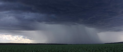 A Distant Storm (Alan McIntosh Photography) Tags: storm cloud weather nature landscape rain darling downs