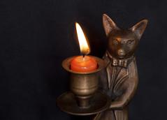 welcome...follow me (verona39) Tags: macromondays flame candlelight butler come indoors macro fox ambiguous invitation candleholder light follow fantasy servant