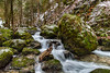 Bruyant mountain stream-1330 (George Vittman) Tags: landscape mountain water bruyant color contrast drop free green moss mountainstream river stream structure vercors wild nature wildlife macro jav61photography jav61 photography fantasticnature
