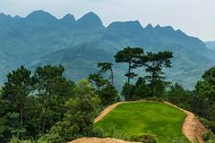 Hory a pole (zcesty) Tags: vietnam23 rýže pole krajina hory vietnam dosvěta hàgiang vn