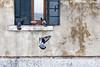 Venezia (Dario de Falco) Tags: pigeons oldwoman hand friendship feed animalfeeding