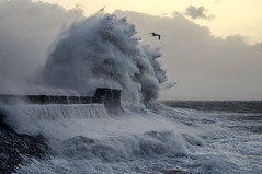 DSC03781  Storm!.. (jefflack Wildlife&Nature) Tags: storm porthcawl seashore sea harbours coastal shoreline waves tide weather ngc coth5 npc