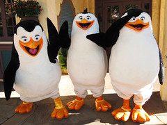 Private, Rico and Skipper (meeko_) Tags: private rico skipper penguin madagascar penguinsofmadagascar dreamworks characters universalorlandocharacters hollywood universal studios florida universalstudios universalstudiosflorida themepark orlando universalorlando
