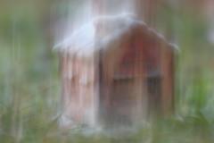 Isabel Allende - La casa degli spiriti (La Casa de los Espíritus - The House Of The Spirits) (susi_59) Tags: macromondays novel myfavouritenovelfiction