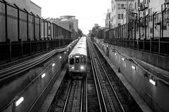 You Got Light in Your Eyes (Thomas Hawk) Tags: america chicago cookcounty illinois usa unitedstates unitedstatesofamerica wickerpark bw subway traintracks us fav10 fav25 fav50 fav100