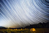 Midnight Snackers (Matt Molloy) Tags: mattmolloy timelapse photography timestack photostack movement motion night sky stars trails lines circles spin deer herd field hay bales trees light burnthills ontario canada landscape nature wildlife countryside lovelife