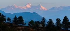 First light falling on Mt. Nandadevi from Chaukori Pithoragarh #1 (Nikondxfx (instagram)) Tags: india kumaon nikon travel uttarakhand destination family hillstation holiday incredible photography nandadevi chaukori mountains hills 24120f4 nikond750