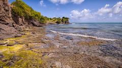 Eau claire des Antilles (sviet73) Tags: martinique eau mer roche
