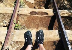 hiking-trail-oahu (quirkytravelguy) Tags: koko crater hike oahu hawaii