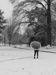 Jardin des Plantes de ROUEN (sarthomarin) Tags: neige rouen normandie jardin
