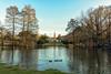 Un sabato al parco (forastico) Tags: forastico d7100 milano lombardia parcosempione parco castellosforzesco