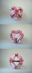 Belladonna (12 units) - Ekaterina Lukasheva (Rui.Roda) Tags: origami papiroflexia papierfalten modular belladonna 12 units ekaterina lukasheva