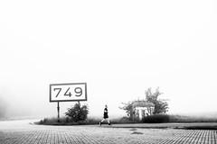 Rhein km 749 Düsseldorf (ThorstenKoch) Tags: street streetphotography stadt strasse schatten shadow schwarzweiss foggy morning jogging outdoor city candit cold monochrome man sunday rhein rheinufer düsseldorf duesseldorf jogger sport runner silence fuji fujifilm thorstenkoch winter white black pov photography photographer picture km 749