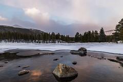 Sunrise at Sprague Lake (mnryno) Tags: spraguelake landscspe sunrise rmnp colorado mountains