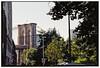 0810_11-09-2017 Nikon F80 fresh 06-2018 Kodacolor ISO200 film trip to USA NY_562 (nefotografas) Tags: vacation triptousa nikonf80 28300mm lens fresh 062018 kodacolor iso200 film brooklynbridge ny brooklyn