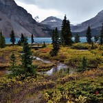 Walking Along and Taking in Views of Bow Lake and Some Nearby Mountain Peaks (Banff National Park) thumbnail