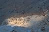 OK P J Img 150-51-52 (FaSaNt) Tags: apuane alpi alpiapuane carrara sagro montesagro cavallo italia cave marmo bianco temporale apuan alps apuanalps marble whitemarble white snow snowfall storm stormy