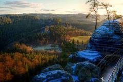Bastei (Ruinenvogel) Tags: hdr schnee snow sachsen saxony wald holz baum tree winter ngc