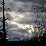 DSC_0352 thumbnail