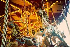 Carousel horses 🎠 (DaniellaSevern) Tags: notts nottingham nottinghamshire theforest goosefair merrygoround carousel carouselhorse donofeedthehorses traditional traditionalfairgroundride fairylights fairground fairgroundlights fairgroundrides rollercoaster pentax pentaxespio140 fujifilm fujifilmsuperia film filmphotography filmcamera colourfilm lifestylephotography peoplephotography streetphotography