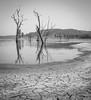 Lake St Clair 7082 (russell.bray) Tags: mud dry bw reflections lakestclair