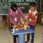 Science Week  (37)