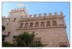 2018.02.03 La Lonja 7 (garyroustan) Tags: valencia valence spain espagne espada lonja architecture gothic gothique