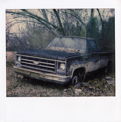 Old Chevy Blues (lancekingphoto) Tags: abandoned chevy truck overgrown vintagetruck polaroid spectrasystem polaroidoriginals instantfilm loneliness barrentrees winter oliversprings tennessee thesouth