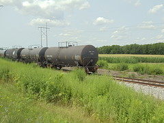 DSC07744 (mistersnoozer) Tags: lal alco c425 locomotive shortline railroad train