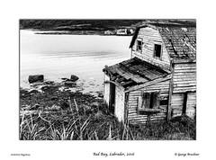 Red Bay, Labrador, 2016 (George Bruckner) Tags: redbay labrador canada fishhut fishing atlanticcoast georgebruckner georgebrucknersphotography georgebrucknersfineart bruckner blackandwhite blackandwhitephotography brucknersphotography brucknerslandscapephotography brucknersfineartphotography blackandwhitephotographyfineart canadianfineartphotography canadianlandscapes pentaxart pentax645z pentaxfineart landscapephotography