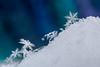 Climb Every Mountain (edit) (LadyBMerritt) Tags: snow ice frozen winter icecrystals snowflakes dendrites