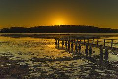 Sunrise Waterscape with Wharf (Merrillie) Tags: daybreak woywoy landscape nature australia foreshore newsouthwales earlymorning nsw brisbanewater morning dawn coastal water sky waterscape sunrise centralcoast bay outdoors