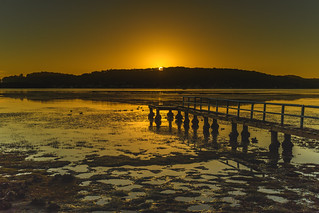 Sunrise Waterscape with Wharf