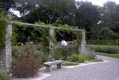The botanical gardens of Visby Gotland Sweden (bellrich1941) Tags: visby gotland sweden