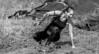 Cry. (Alex-de-Haas) Tags: 70200mm bootcamprun d750 dutch dutchies geestmerambacht holland langedijk nederland nederlands nikkor nikon noordholland bootcamp candid conquering dirt dirty endurance evenement event familie family fit fitdutchies fitness fun hardlopen joggen jogging mensen modder mud obstacle obstakel overwinnen people plezier recreatie recreation rennen renner renners run runner runners running sport sportief sportiviteit sporty summer team teamspirit teamgeest vies volharding zomer