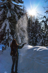 trng-4954 (juliantronegger) Tags: glanz millstättersee winter eis lake see