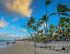 The Beach and Palm Trees - Punta Cana Dominican Republic (mbell1975) Tags: puntacana laaltagracia dominicanrepublic do dr caribbean island bavaro beach sand water ocean atlantic sea palm tree trees